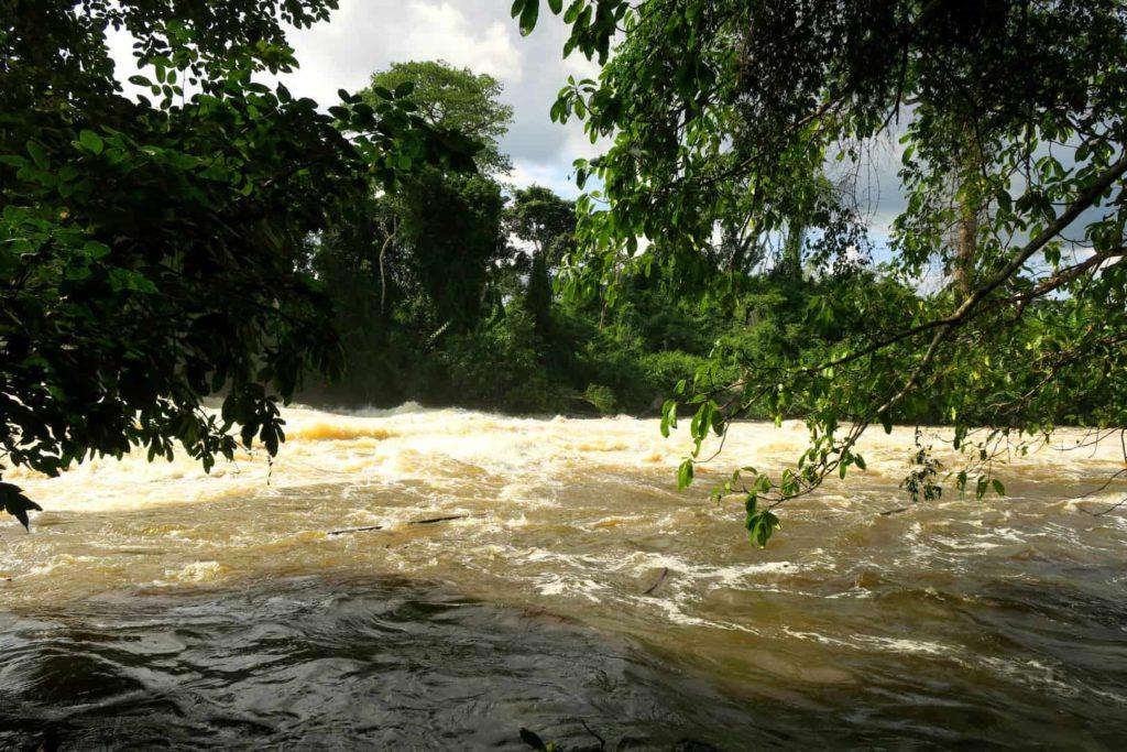 Sassandra Fluss bei Soubré - Elfenbeinküste